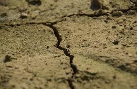 A PIEDI NUDI NEL CEMENTO: IN UN ANNO CONSUMATI 24 MQ DI SUOLO CITTADINO PER OGNI ETTARO DI AREE VERDI Presentazione del Rapporto 2019 SNPA sul consumo di suolo in Italia